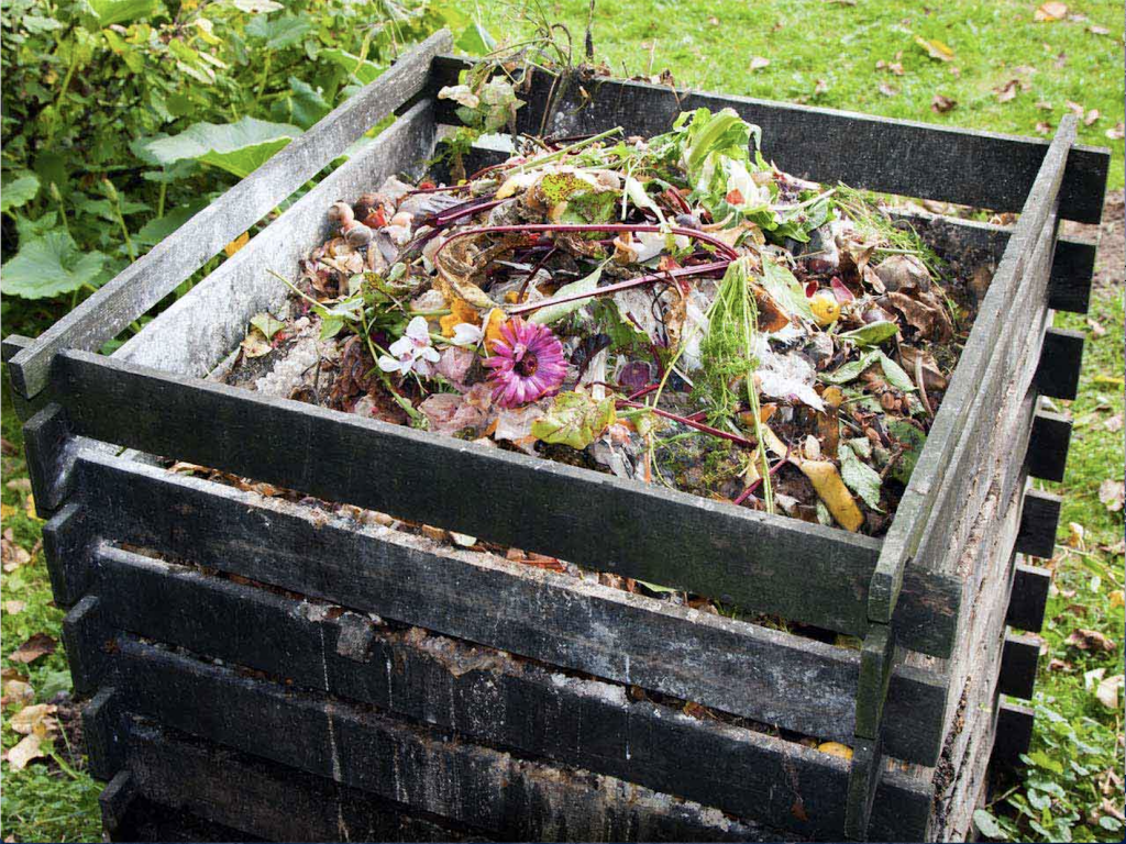 Food Waste - Compost Bin