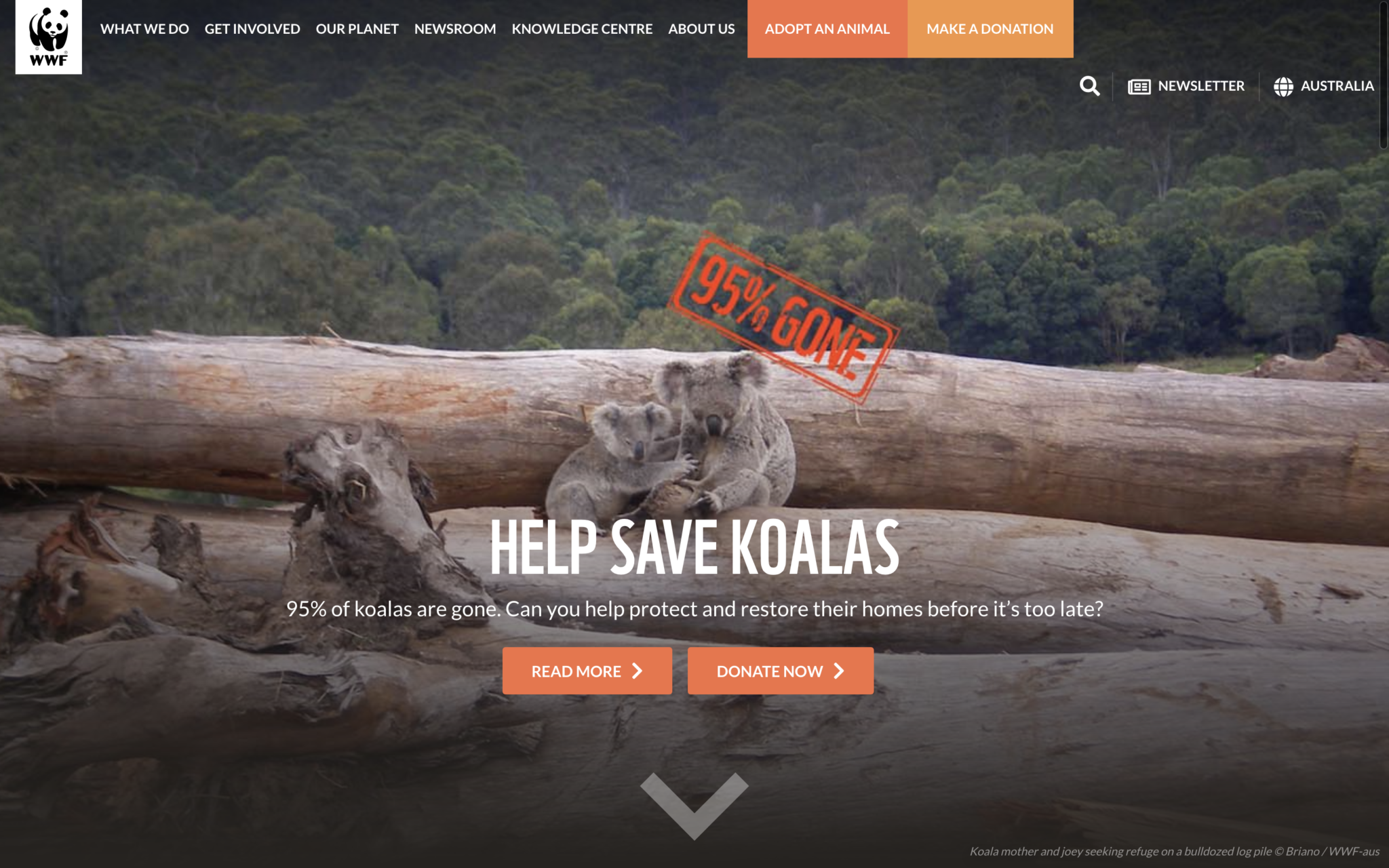 Image of hero section - WWF-Australia homepage